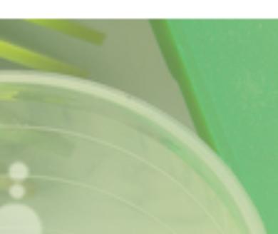 Appel à projets PIAVE : innovation et diversification d'entreprises spécialisées dans le diesel